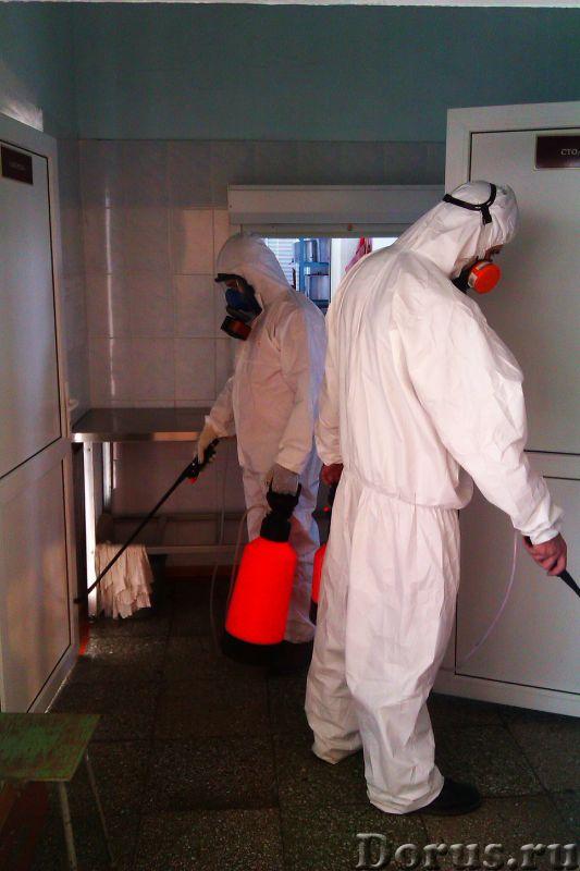 Санобработка от насекомых, грызунов, дезинфекция - Уборка и дератизация - Санитарная обработка жилых..., фото 1