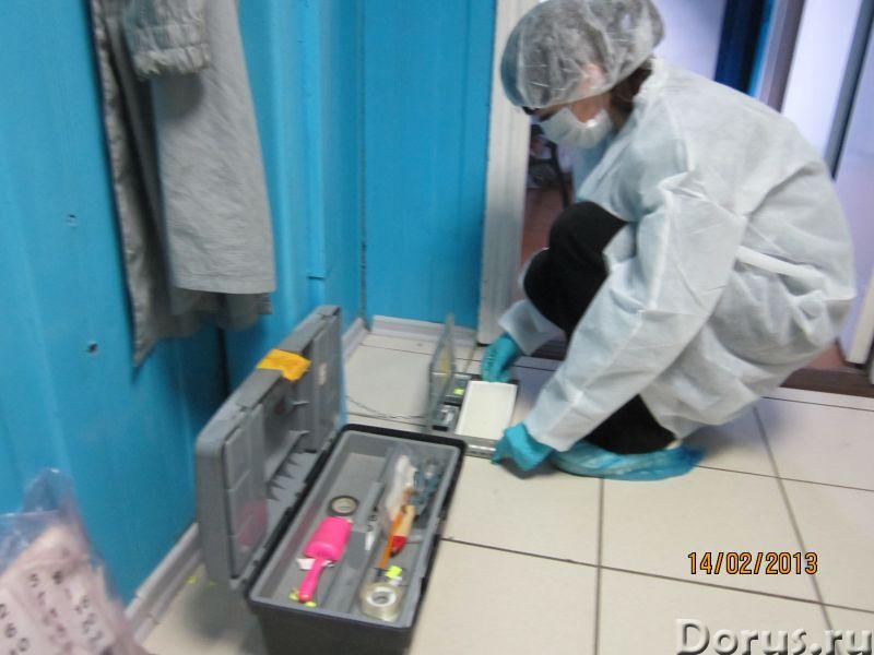 Санобработка от насекомых, грызунов, дезинфекция - Уборка и дератизация - Санитарная обработка жилых..., фото 6